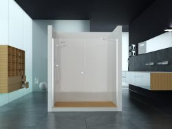 מקלחון חזית קבוע ודלת לפי מידה