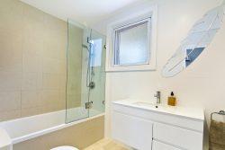 אמבטיון קבוע ודלת עם צירים לפי מידה