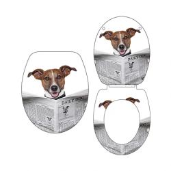 מושב אסלה כלב עם עיתון